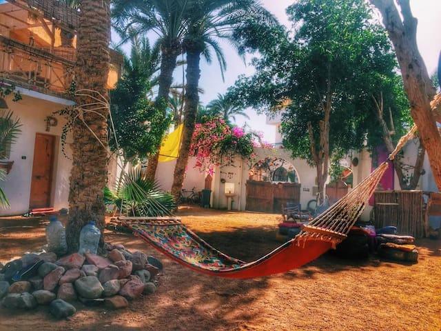 Sun Rise Camp Dahab