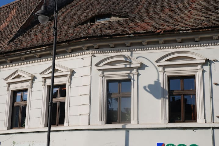 Nice and large apartement in the Old Town - Sibiu - Apartment
