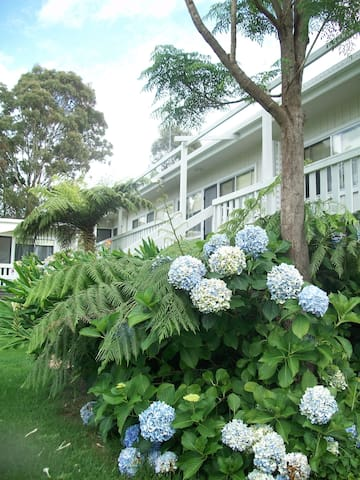 Top of the Lake Holiday Units - Millingandi, Merimbula