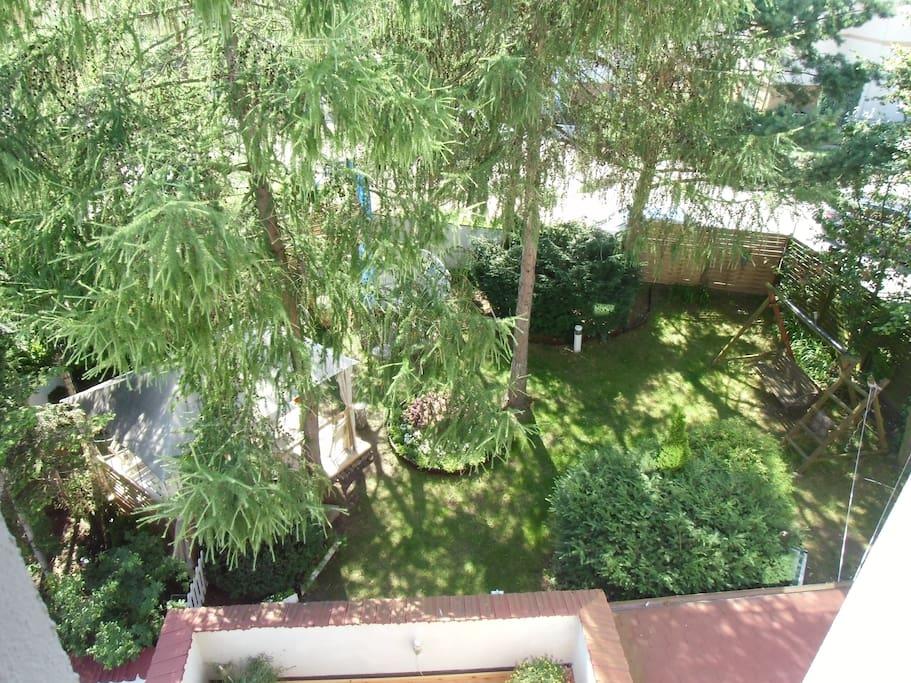 widok z okna sypialni na ogrod