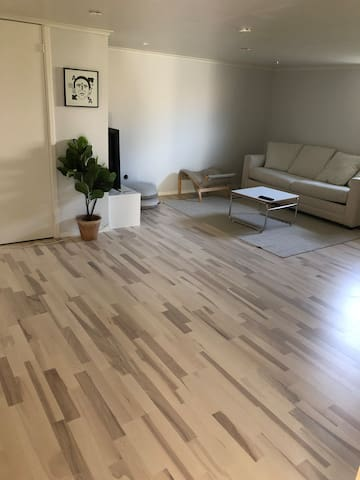 Basement with a sofa bed 1,80