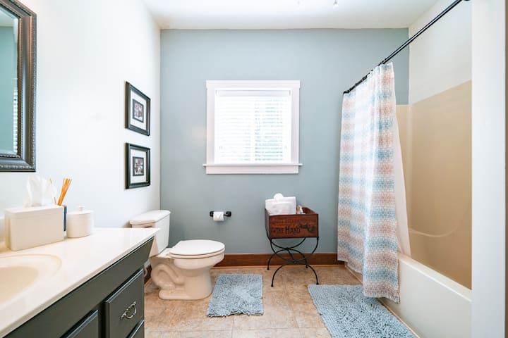 Master bath with tub/shower combo. Soap, shampoo, conditioner, blow dryer for your use.