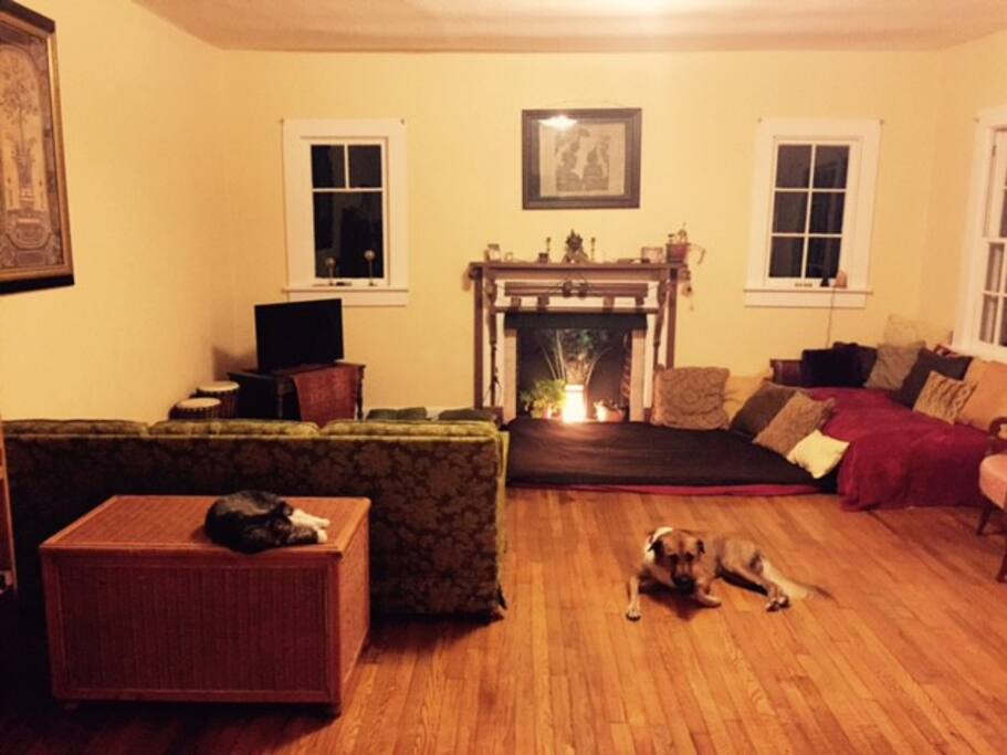 Spacious living room in house with our pets Hazel and Juniper modeling :)