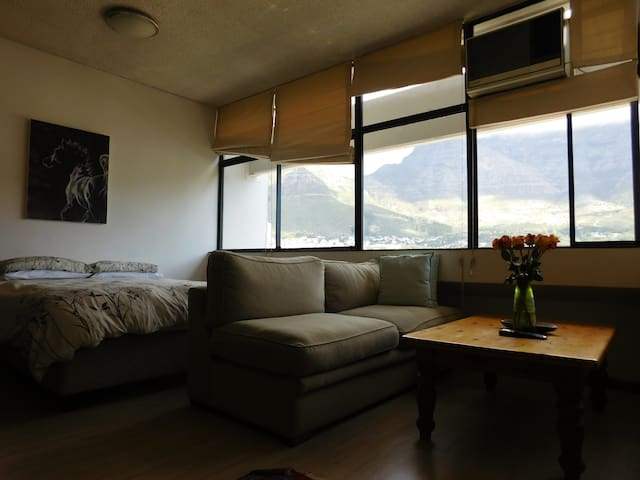 Studio Apartment with Beautiful View