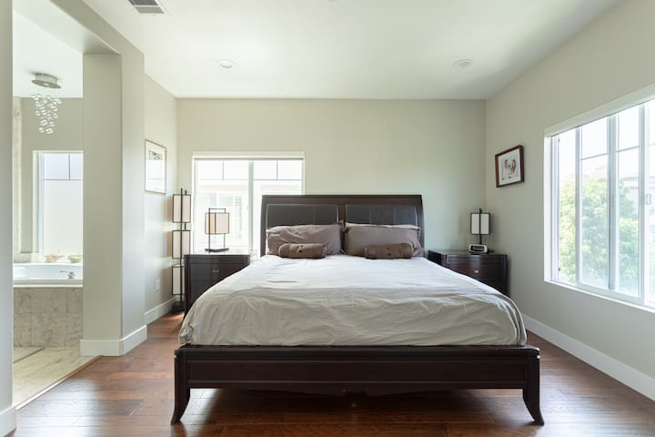 Master Bedroom with King Sized Pillow top Mattress