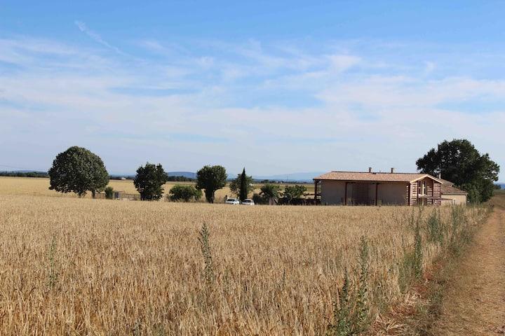 Gîte  De Lure,  plateau de Valensole et Verdon