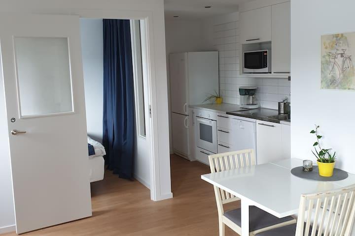 Mysig lägenhet på 35 kvm nära Stockholm city