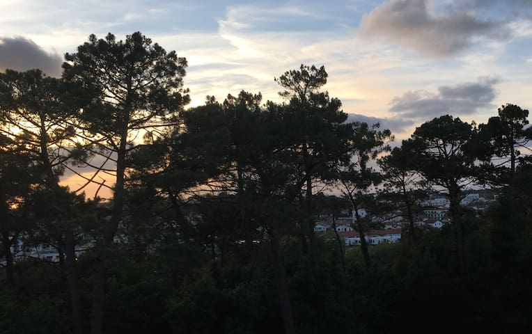 Balcon aperçu océan, vue montagne (Rhune), ensoleillé à partir de midi et jusqu'au coucher du soleil, visible depuis le balcon.