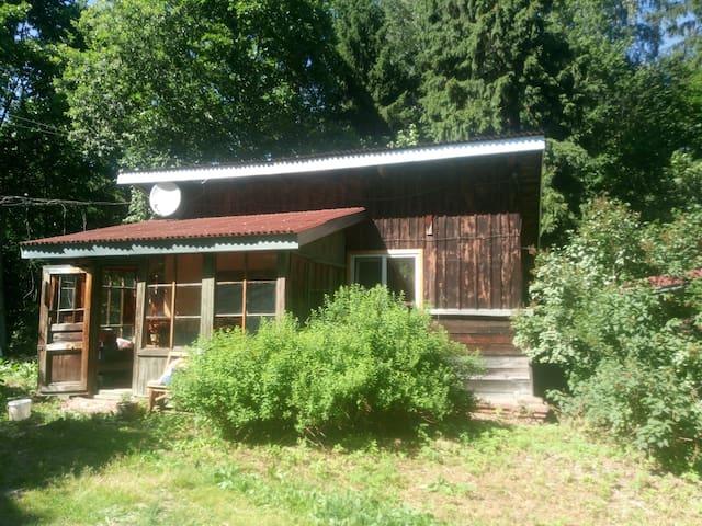 Уютный домик в Абрамцево