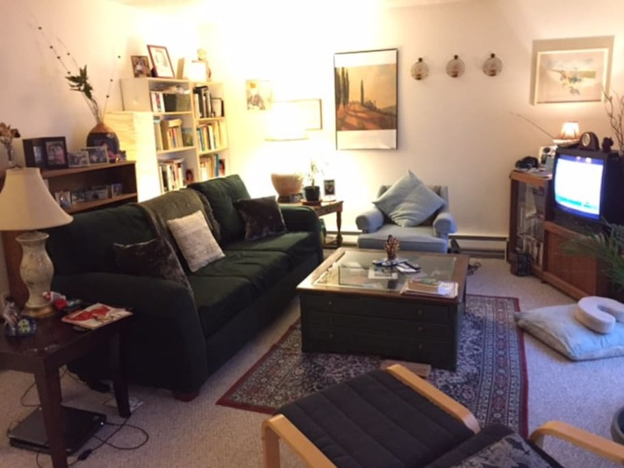 Cozy, shared living room.   We do have a kitty!  She's lots of fun.