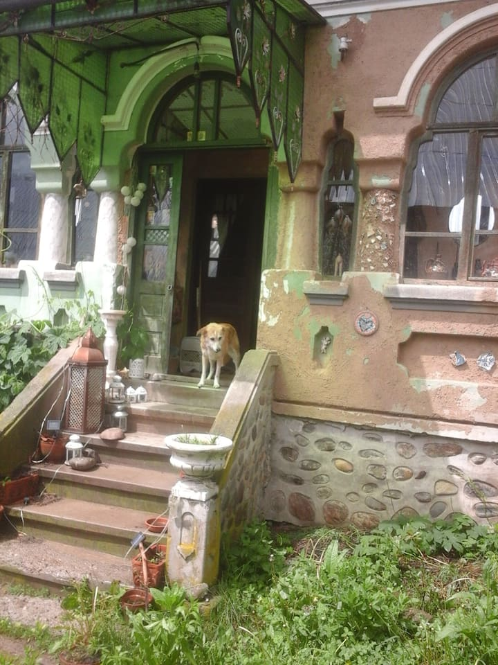 The entrance of the house with Lola, the dog