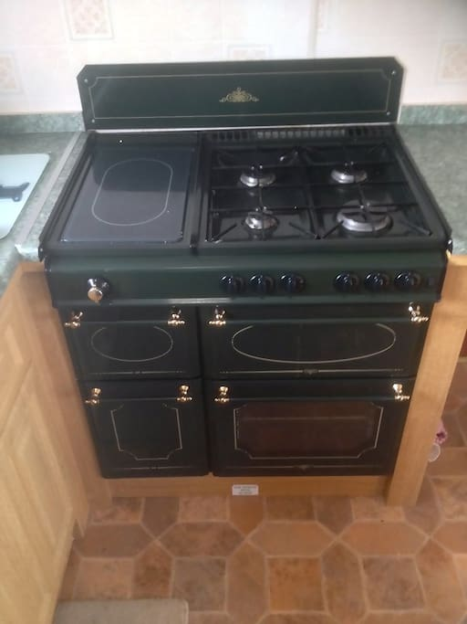 Family size cooker