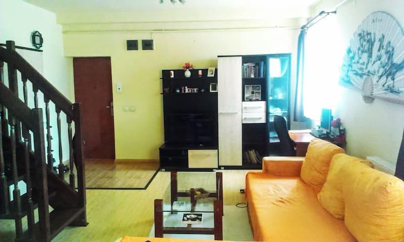 Cute living-room for renting in Sibiu - Sibiu - Apartment