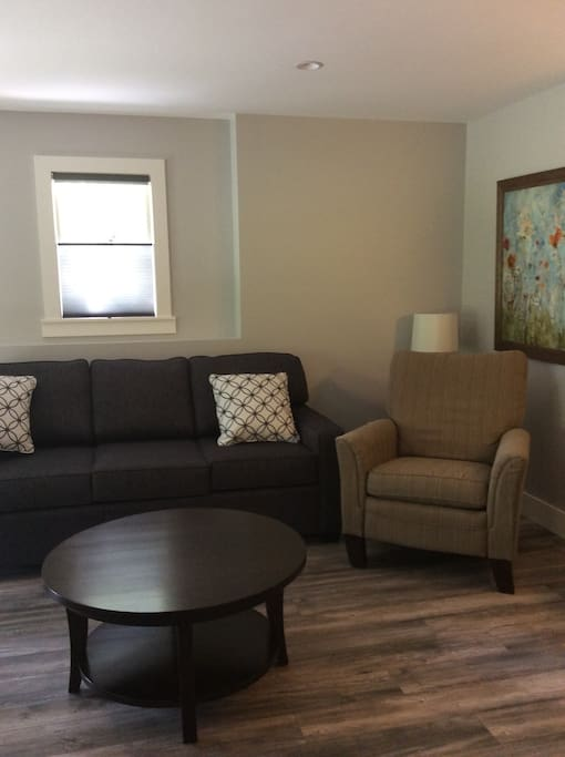 Sitting area with pull out sofa