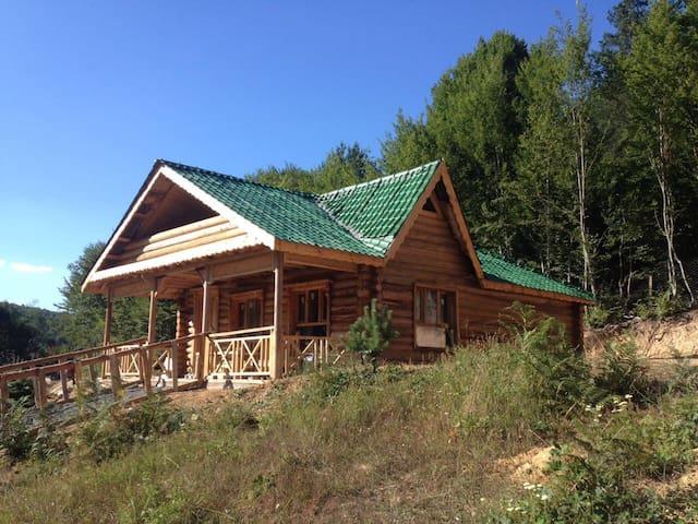 Doğa ve siz - Candarlı Köyü - Ağaç Ev
