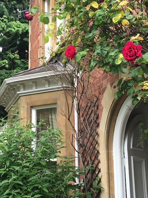 Pretty rose arch over period entrance porch.