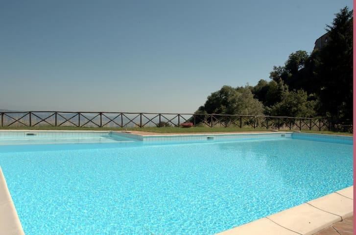 Bilo4 with pool