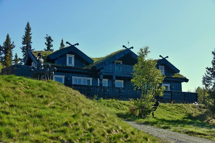 Fjellpalass - stor høyfjellshytta på Gaustablikk