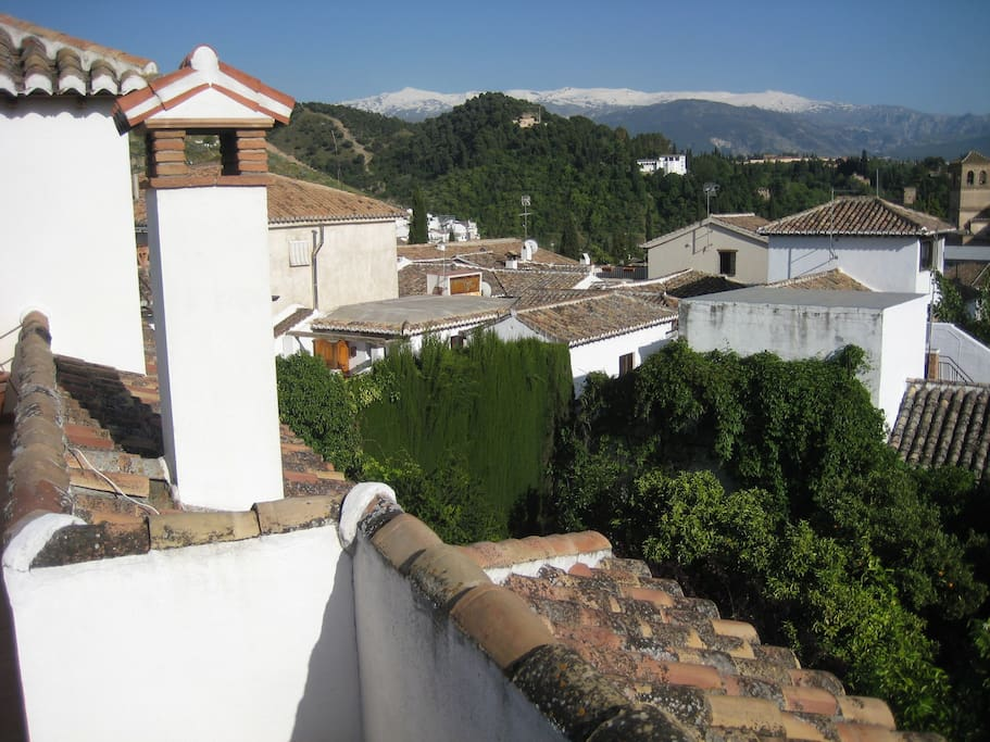 Vista desde azotea / View from roof terrace