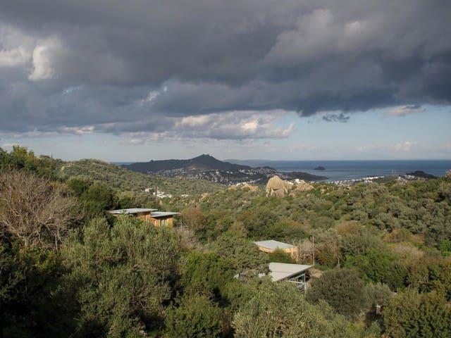 Herbafarm Bodrum - Ecologic Houses - Yalıkavak Belediyesi - Chalet