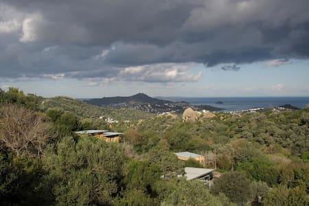 Herbafarm Bodrum - Ecologic Houses - Yalıkavak Belediyesi - Xalet
