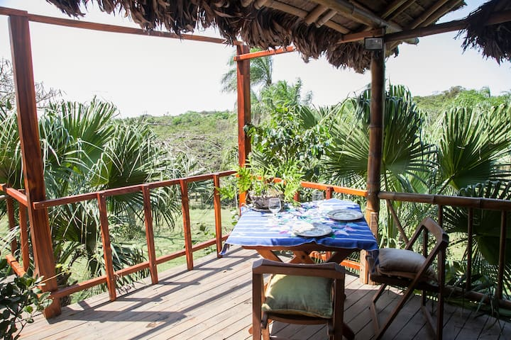 Quinta Victoria Bamboo Villa - Santa Cruz de la Sierra - Villa