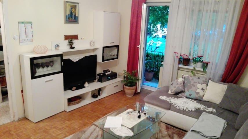 Awesome app to admire Ljubljana - Lubiana - Appartamento