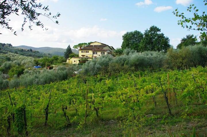 Porzione casa colonica vista Firenze