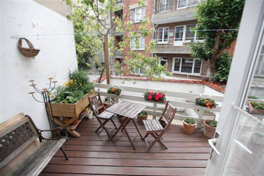 Terrace + garden