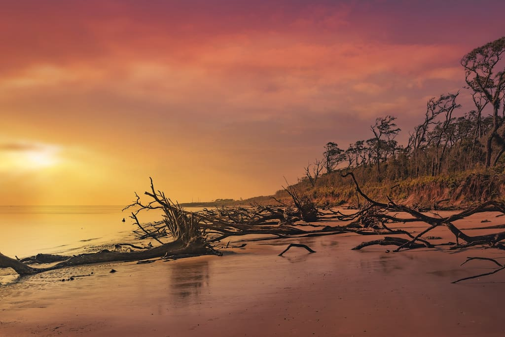 Find some solace on the driftwood beach...amazing.