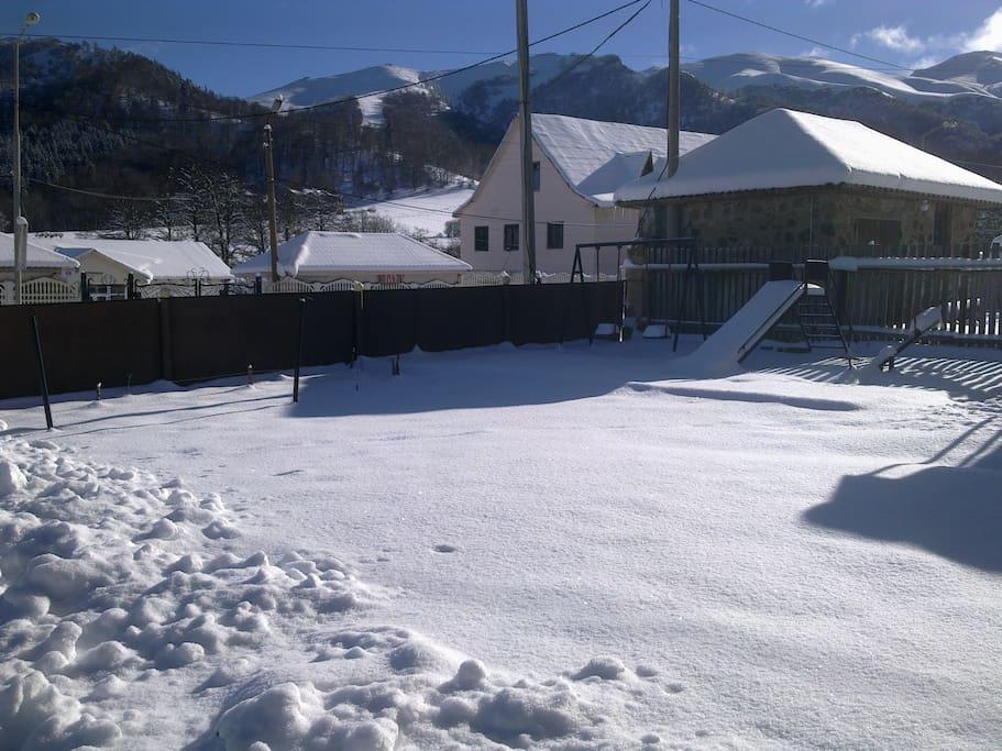 Yard in winter