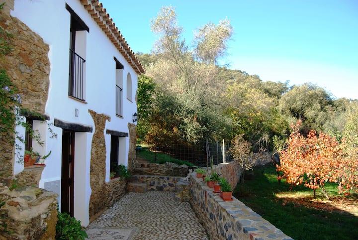 Alojamiento rural de Peter. Corterrangel-Aracena