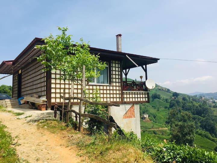 Doğa ile baş başa manzaralı müstakil bir dağ evi