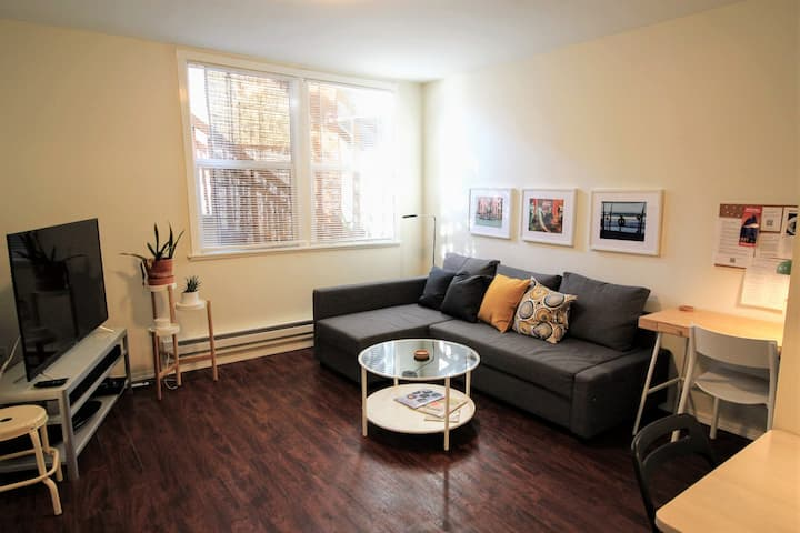Centrally located 1-BR apt, near attractions