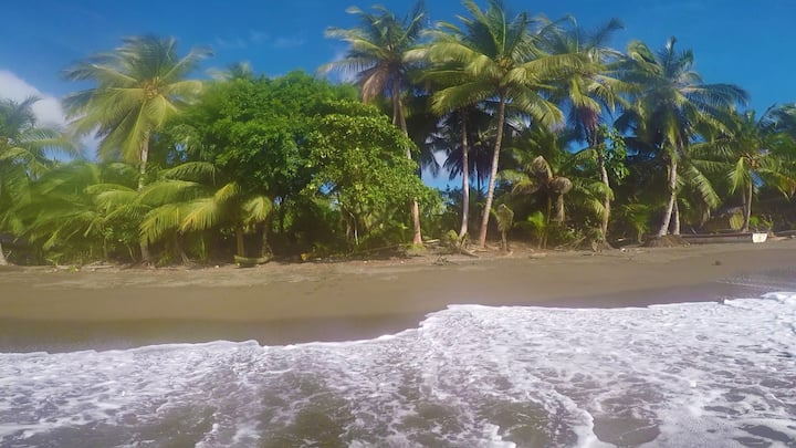Mar y Selva - Un paraiso escondido!!!