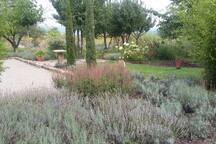 Boulebahn im Garten