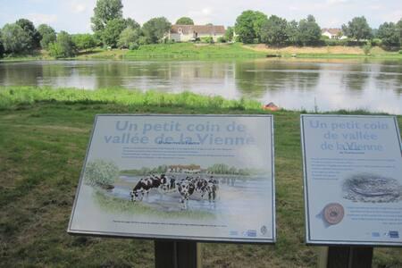 La Pataterie sur la Vienne (river) - Chinon - Talo