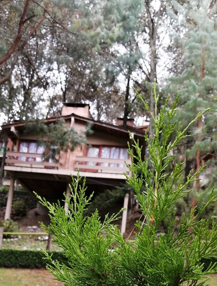 Cabaña 2 personas en el bosque del Zembo