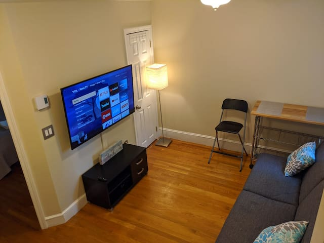 Furnished apt in Boston MGH TD Garden Aquarium