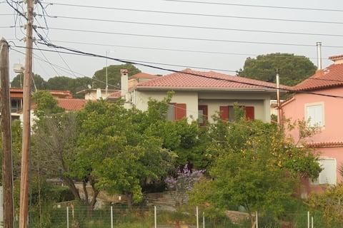 Vasilis Home