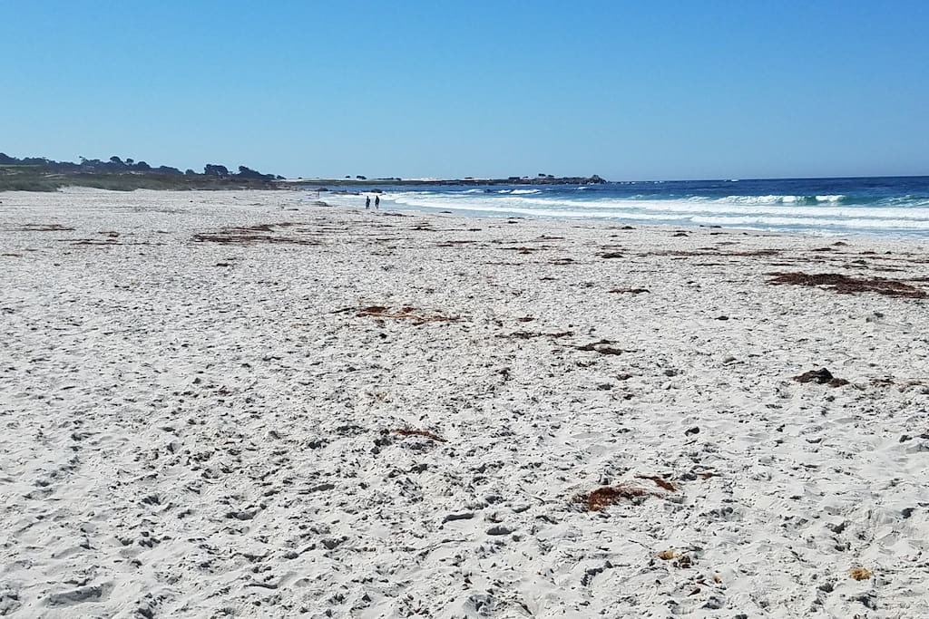 Asilomar Beach ..easy 10-15 min walk from cottage..includes dog beach...open to the public .. very rarely crowded.