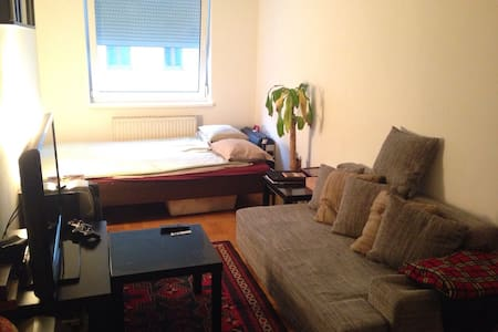 Wonderful and central room in 1080 - Vienne - Appartement