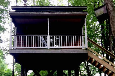 Stay In tree house or set up tent