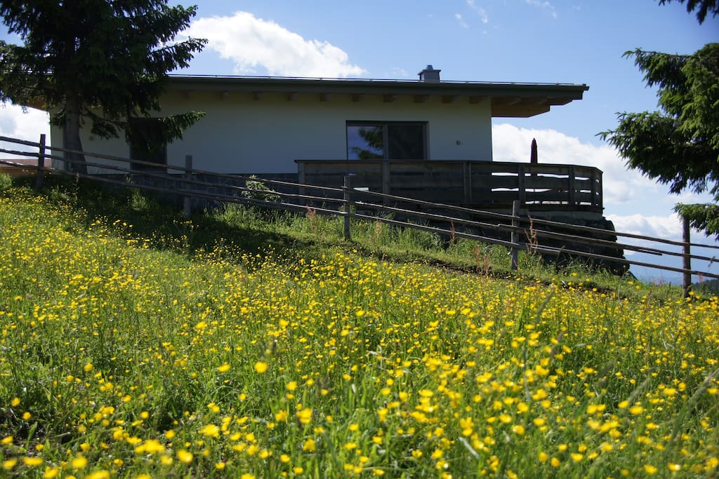 Ferienhaus von der Seite mit bunter Alm Wiese