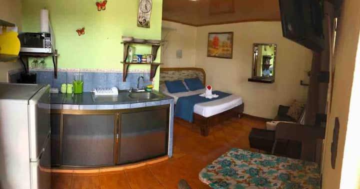 Apartment Colibri #2