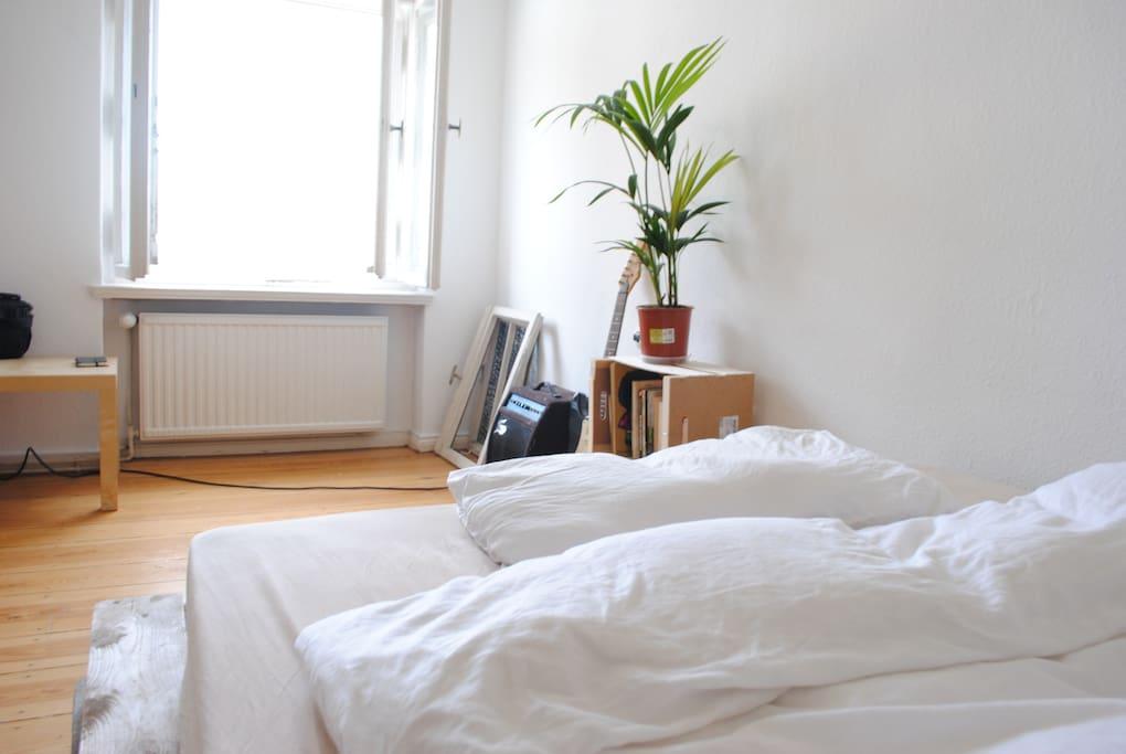 Helles Zimmer In Moabit In 2er Wg Wohnungen Zur Miete In