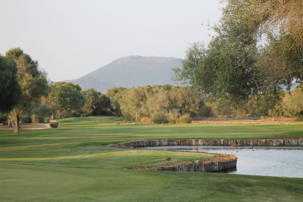 Two golf courses and many facilities on site