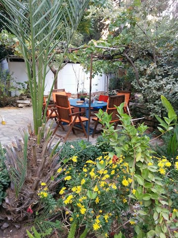 Beautiful garden apartment in German colony - Jérusalem - Appartement