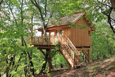 Cabane dans les arbres : Mazerolle