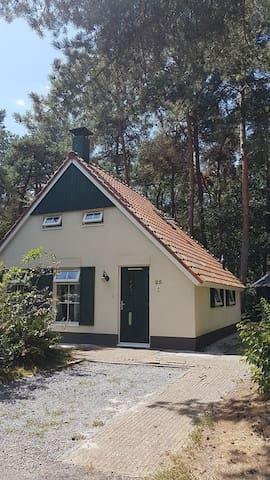 IJhorst Witte Bergen 25